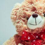 Gratis billede af teddybjørn
