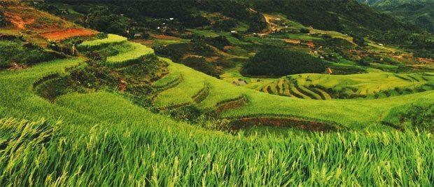 Gratis billede fra Vietnam